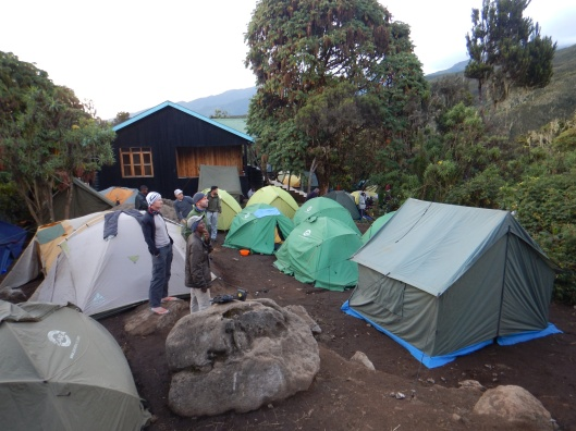 Machame Camp 3,000m (9,840ft)