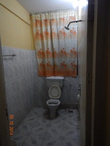 Bathroom shower and toilet together