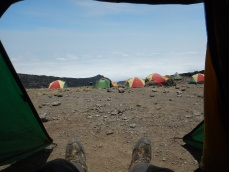 Looking Out of the Tent