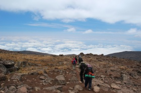Continuing the Hike Down to Mweka Camp