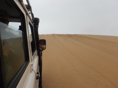 The View Heading Down the Dune