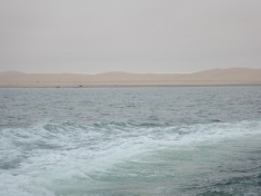 Viewing the Namib Desert Coast from the Boat