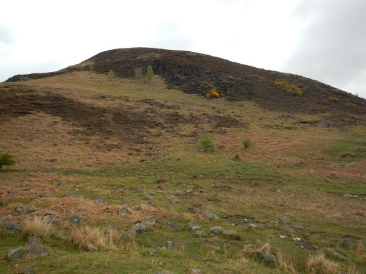 The Goal. Top of Conic Hill