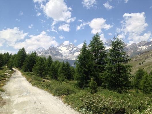 The Trail/Path