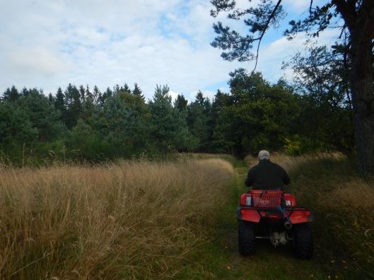Enjoying a good ride through the countryside