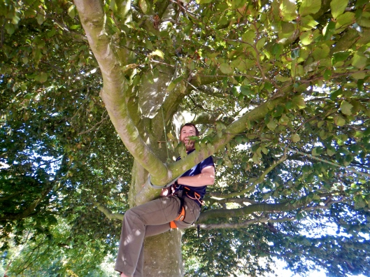 Just doing some tree climbing. Part of the Nature line at the school