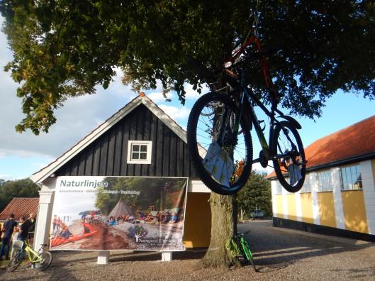 Denmark Likes Bikes! Pretty cool idea to attract attention