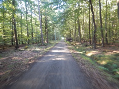 A great ride through the forest and along the coast to the ferry