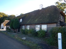Thatched Roof with Thatched Walls