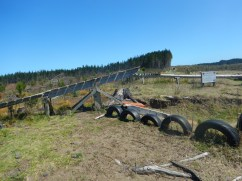 A teeter-totter and other fun obstacles
