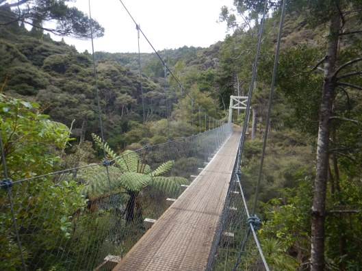 One of several suspension bridges used for hiking