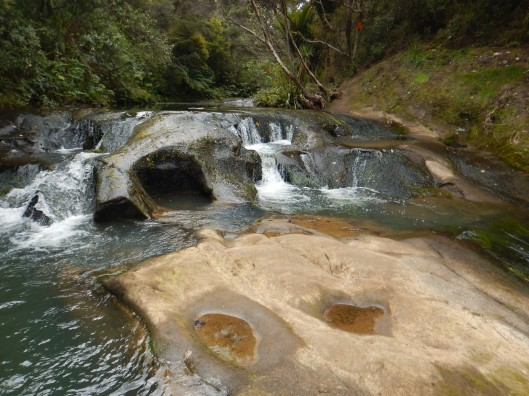 A little gem of a spot on the hike to Mokoro Falls