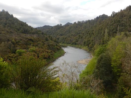 Overlooking the Whanganui River at Whakahoro