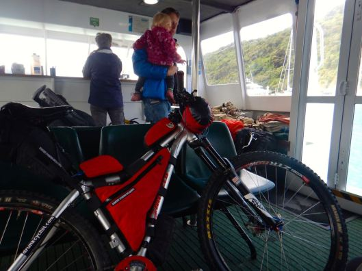 Enjoying the Cruise Through the Marlborough Sounds
